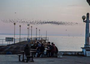paseo marítimo de Sukhumi